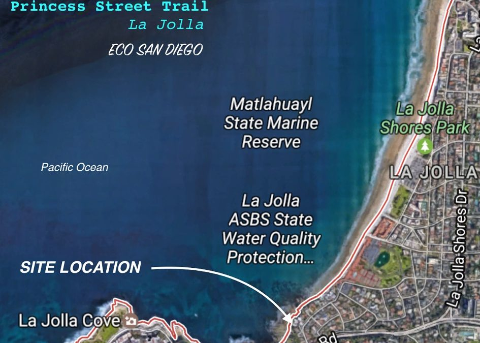 Support Public Access: Princess Street Coastal Access Trail