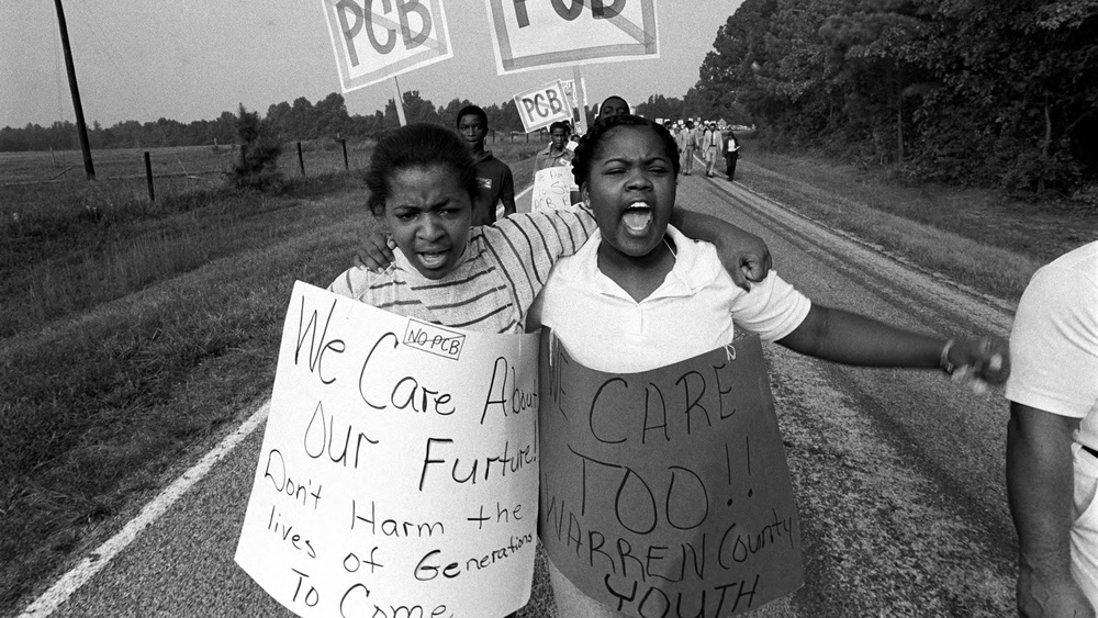 What are Environmental Justice Groups, and What Do They Do?